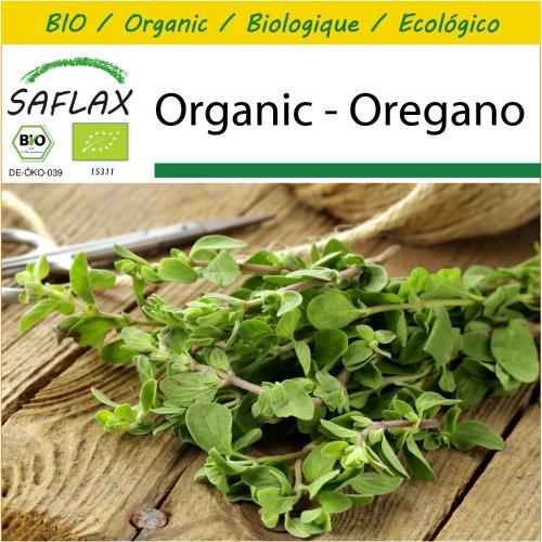 SAFLAX Potting Set - Organic - Oregano - 1500 certified organic seeds  - Origanum