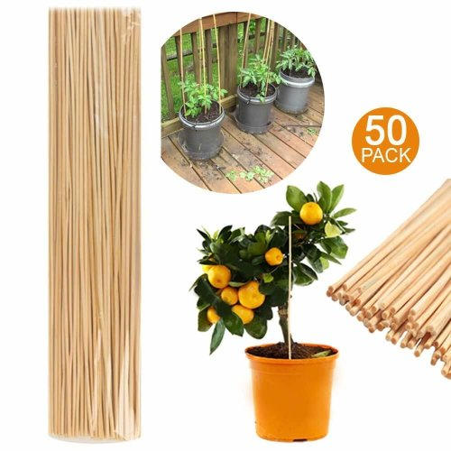 Wooden Bamboo Plant Sticks 40cm Garden Canes Plants Support Flower Stick Cane