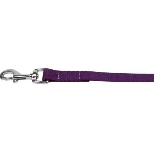 Mirage Pet 124-1 PR1006 Plain Nylon Pet Leash, Purple - 1 in. by 6 ft.