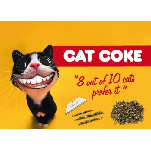 Catnip - Cat Coke