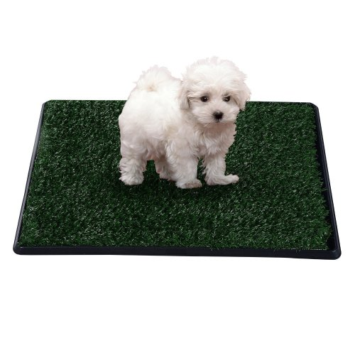 PawHut Dog Toilet Training Mat | Indoor Dog Toilet