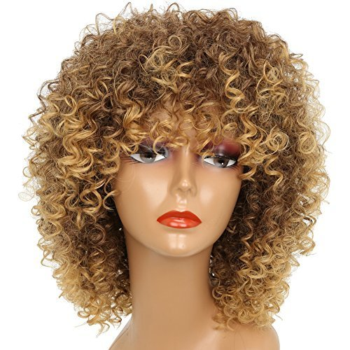 MISSWIG Synthetic Curly Wigs Heat Resistant Fiber Kinky Curly Wigs for  Black Women Short Afro Wigs with Free Wig Cap on OnBuy 80e970364