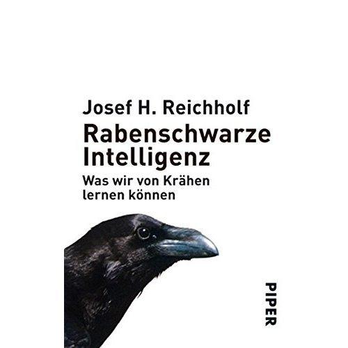 Rabenschwarze Intelligenz: Was wir von Krähen lernen können