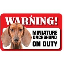 Smooth Haired Miniature Dachshund Pet Sign