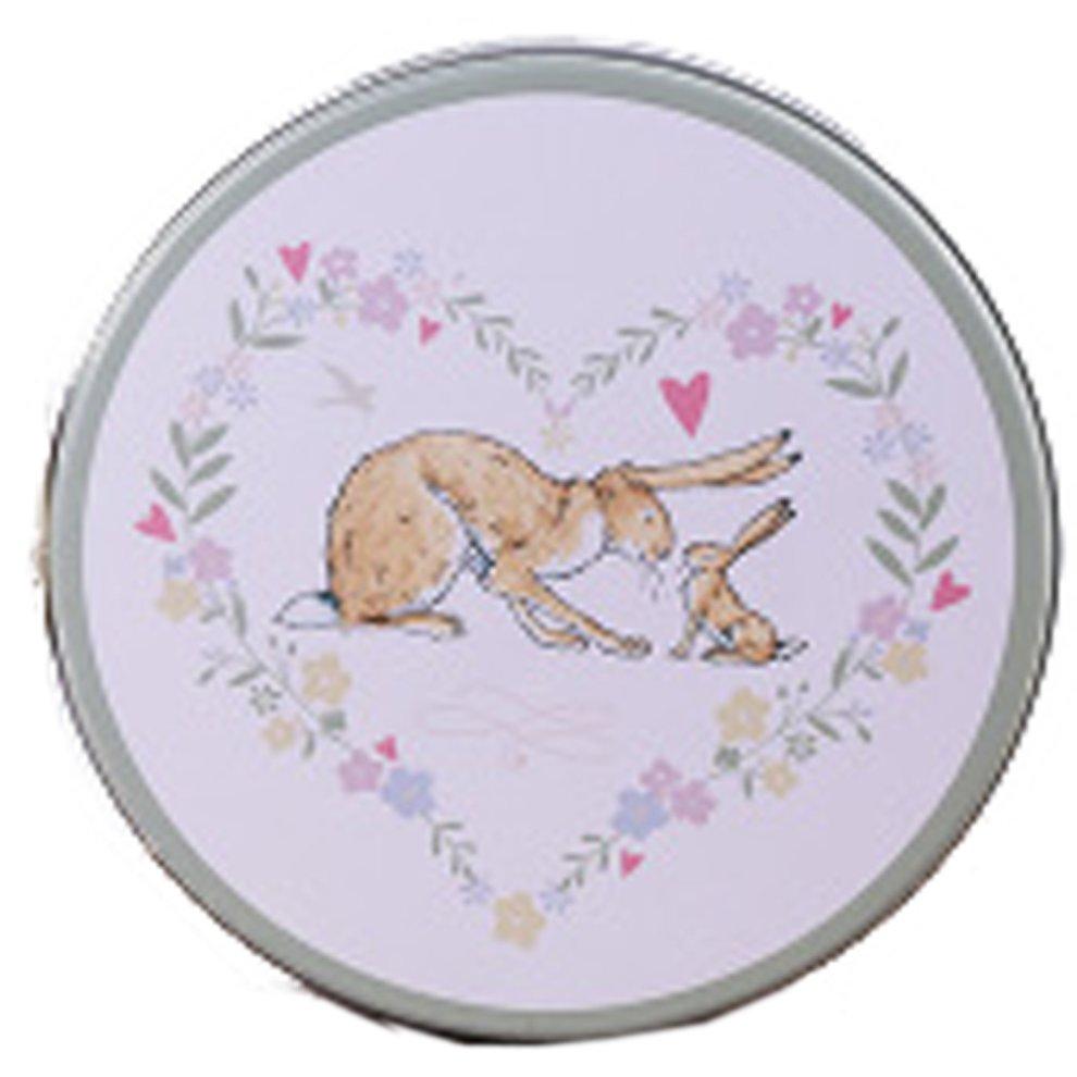 Premium Empty Cookie & Candy Gift Tins & Box, Decorative Rabbit(5 3