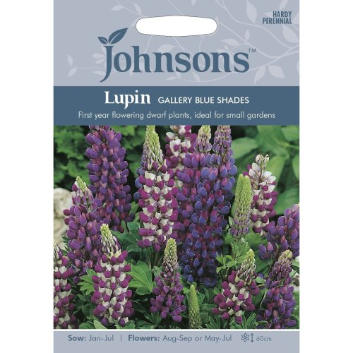 Johnsons Seeds - Pictorial Pack - Flower - Lupin Gallery Blue Shades - 20 Seeds