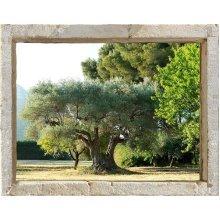 PLAGE 800402 WINDOW 'TROMPE L'OEIL' ADHESIVE - Olive grove, 60 x 75 cm