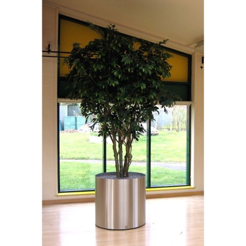 Artificial Silk Ficus Tree IFR