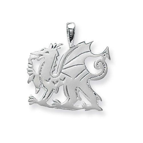 Childrens Sterling Silver Medium Welsh Dragon Pendant On A Curb Necklace