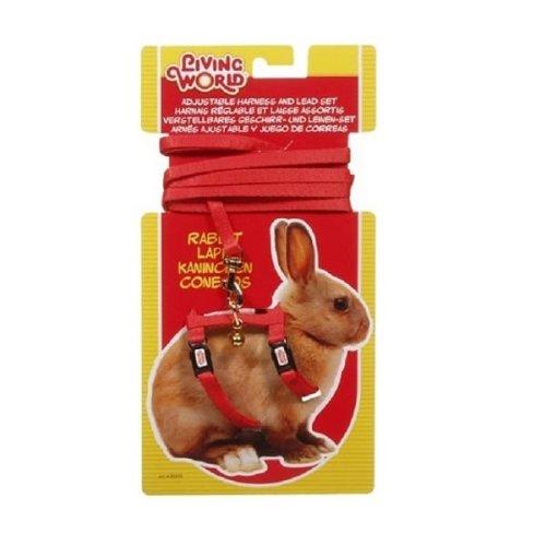Living World Adjustable Rabbit Harness/ Lead Set