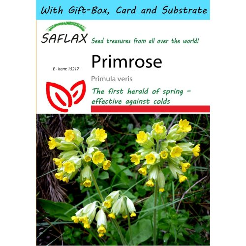 Saflax Gift Set - Primrose - Primula Veris - 100 Seeds - with Gift Box, Card, Label and Potting Substrate