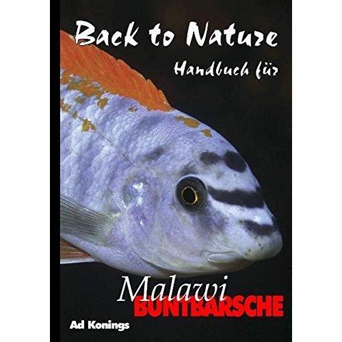 Malawibuntbarsche.