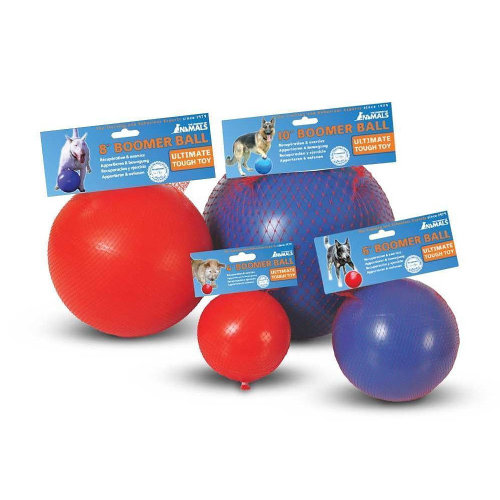 The Company of Animals Boomer Ball Dog Toy