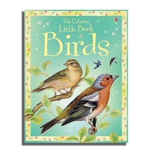 Little Book of Birds (usborne Little Books)