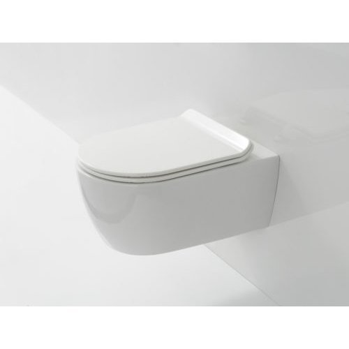 Rimless D Shape Wall Hung Compact Toilet WC Soft Close SLIM Seat